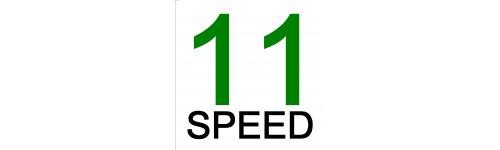 11 biegowe
