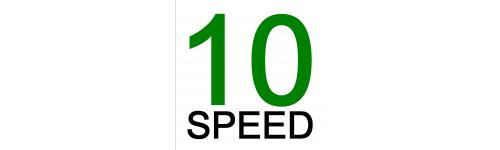 10 biegowe